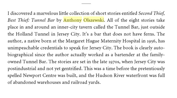 Second Thief, Best Thief by Anthony Olszewski reviewed in Crossing Under the Hudson